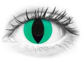 ColourVUE Crazy Lens - Anaconda - plano (2 lenses)